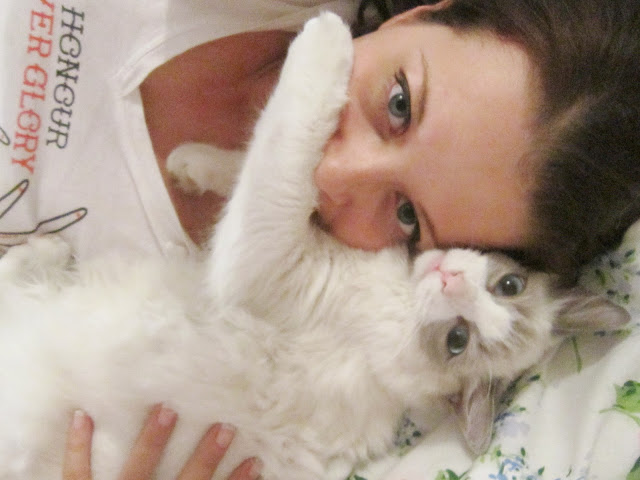 My Big Kitten Merlin ♥