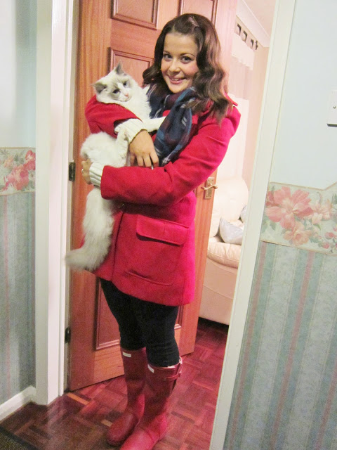 My Big Kitten Merlin ♥