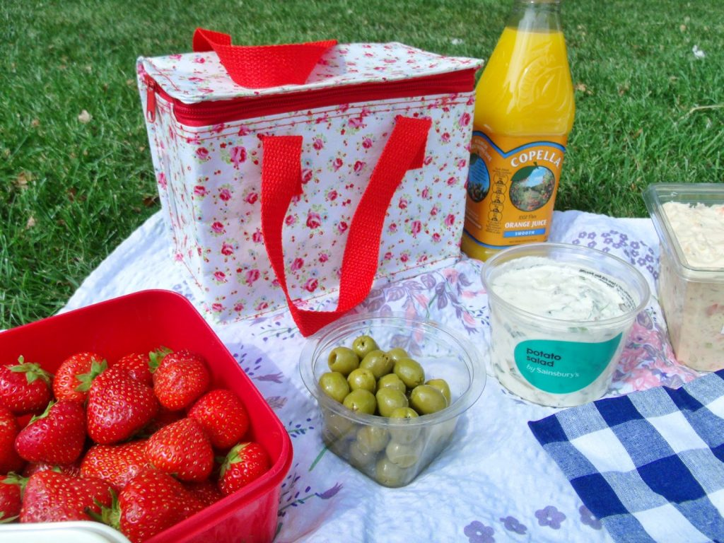 Day out & Picnic in Ely ♥