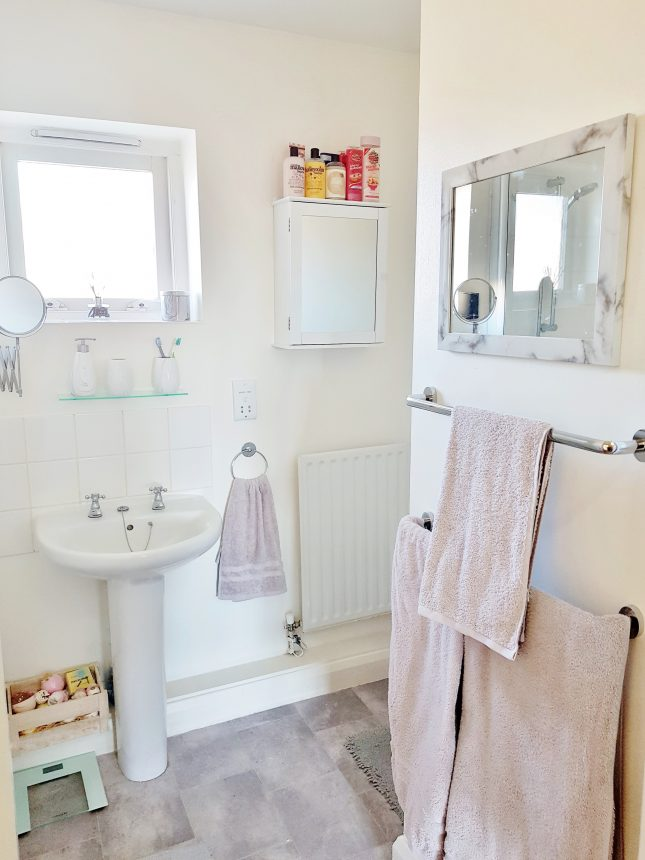 My First Home: The Bathroom
