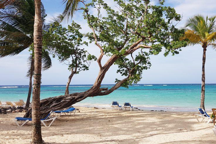 Riu Ocho Rios Jamaica Hotel beach