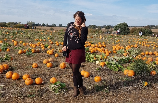 Pumpkin Picking at The Pop Up Farm